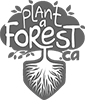 Plant A Forest