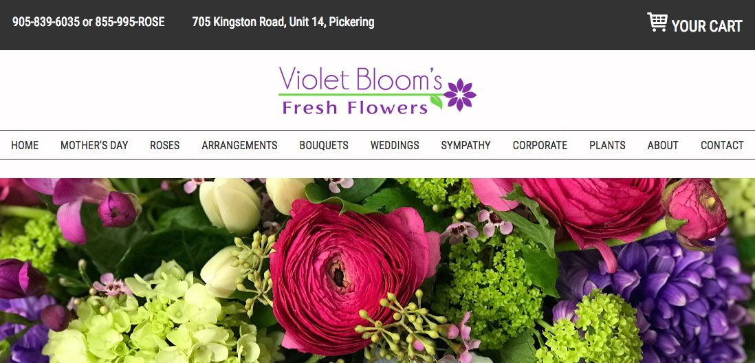 Violet Blooms screenshot