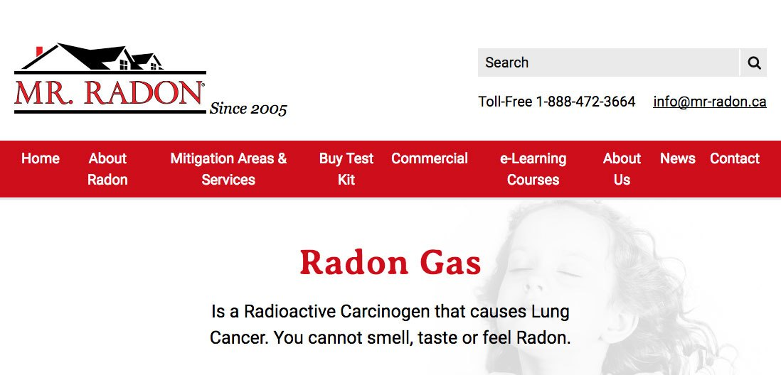 Mr. Radon Homepage screenshot